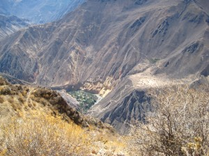 The Oasis that we would climb down to the second day. See that crazy path?!