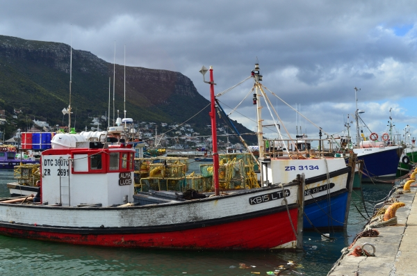 Boats at Kalk Bay, Cape Town, South Africa